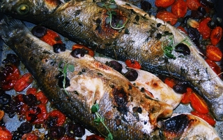 Mediterranean sea bream