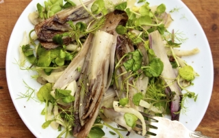 Salad of chicory and pine nuts