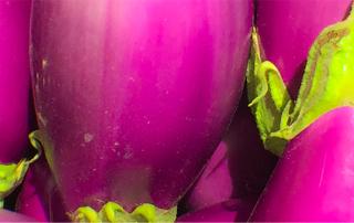 what are aubergines