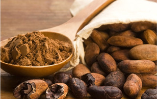 cacao powder chocolate health benefits