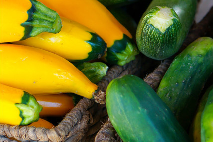 Courgette-featured